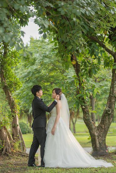 Album cưới lãng mạn tại Đà Lạt Tháng 12 khuyến mãi còn 10,800,000 - Jolie Holie - Hình 12