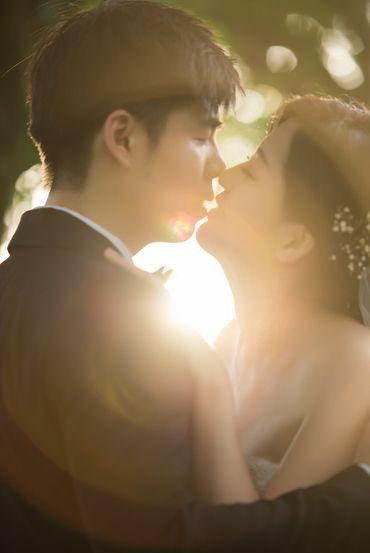 Album cưới lãng mạn tại Đà Lạt Tháng 12 khuyến mãi còn 10,800,000 - Jolie Holie - Hình 15