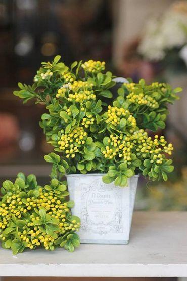 Hoa vải cao cấp - Midori Shop - Phụ kiện trang trí ngành cưới - Hình 64