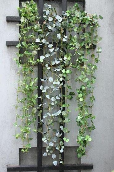Hoa vải cao cấp - Midori Shop - Phụ kiện trang trí ngành cưới - Hình 72
