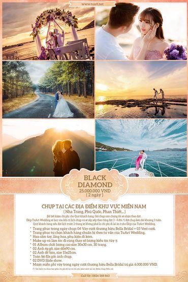 Gói chụp ở khu vực miền Nam - TuArt Wedding Đà Nẵng - Hình 1