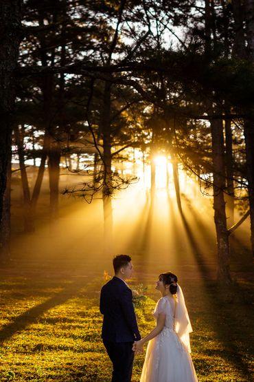 GÓI CHỤP ẢNH NGOẠI CẢNH ĐÀ LẠT - Rin Wedding Đà Lạt - Hình 5