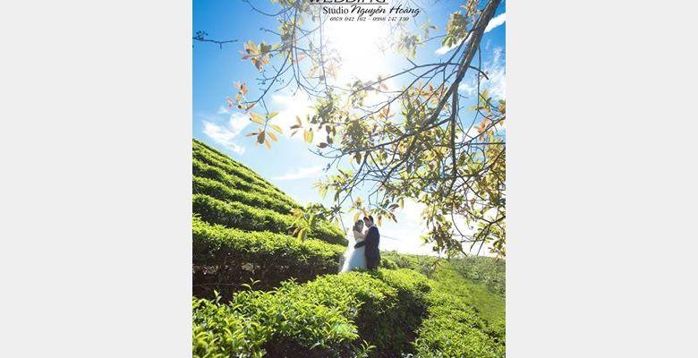 Áo cưới Nguyễn Hoàng - Lâm Đồng - Hình 7