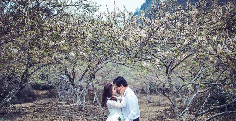 Hoa Nghiêm Bridal - Thừa Thiên - Huế - Hình 3