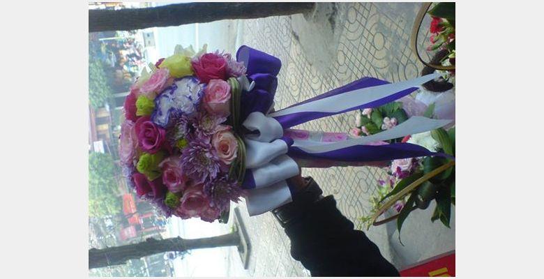 Blue Flower - Thành phố Ninh Bình - Tỉnh Ninh Bình - Hình 4