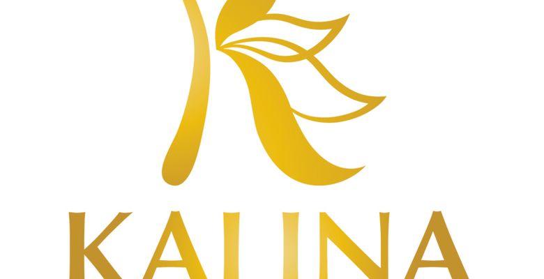 Trung Tâm Hội Nghị Tiệc Cưới Kalina - Quận Tân Phú - Thành phố Hồ Chí Minh - Hình 1