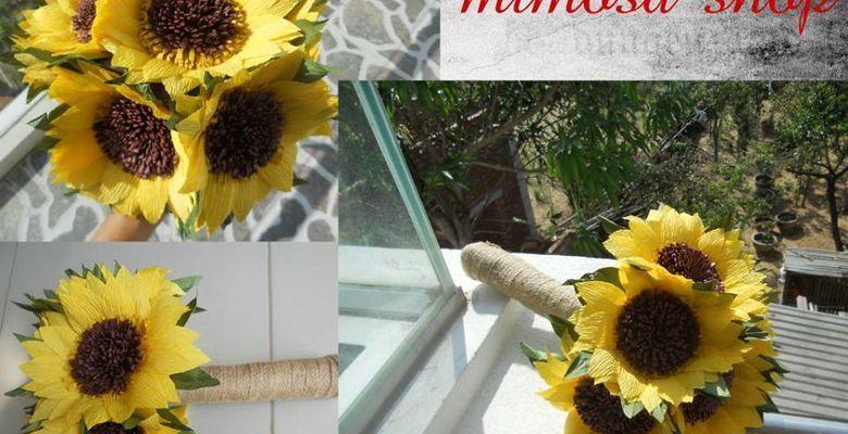 Hoa Giấy Mimosa - Đà Nẵng - Hình 2