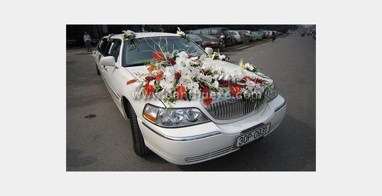 Xe hoa Tùng Dương - Hình 1