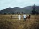 Album ảnh cưới: Anh muốn cùng em đi đến mọi nẻo đường - NamDoo Wedding Studio - Hình 3