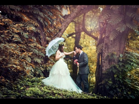 Wedding album: Snow white love story
