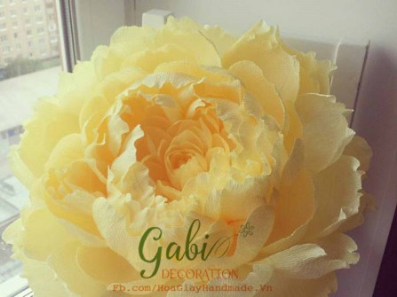 Gabi Decoration